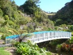 Subtropical Quarry Garden Whangarei