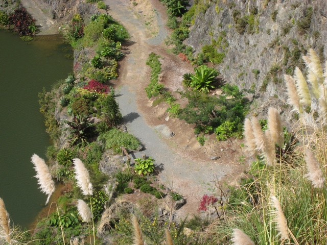 You are browsing images from the article: Gallery: Subtropical Whangarei Quarry Garden